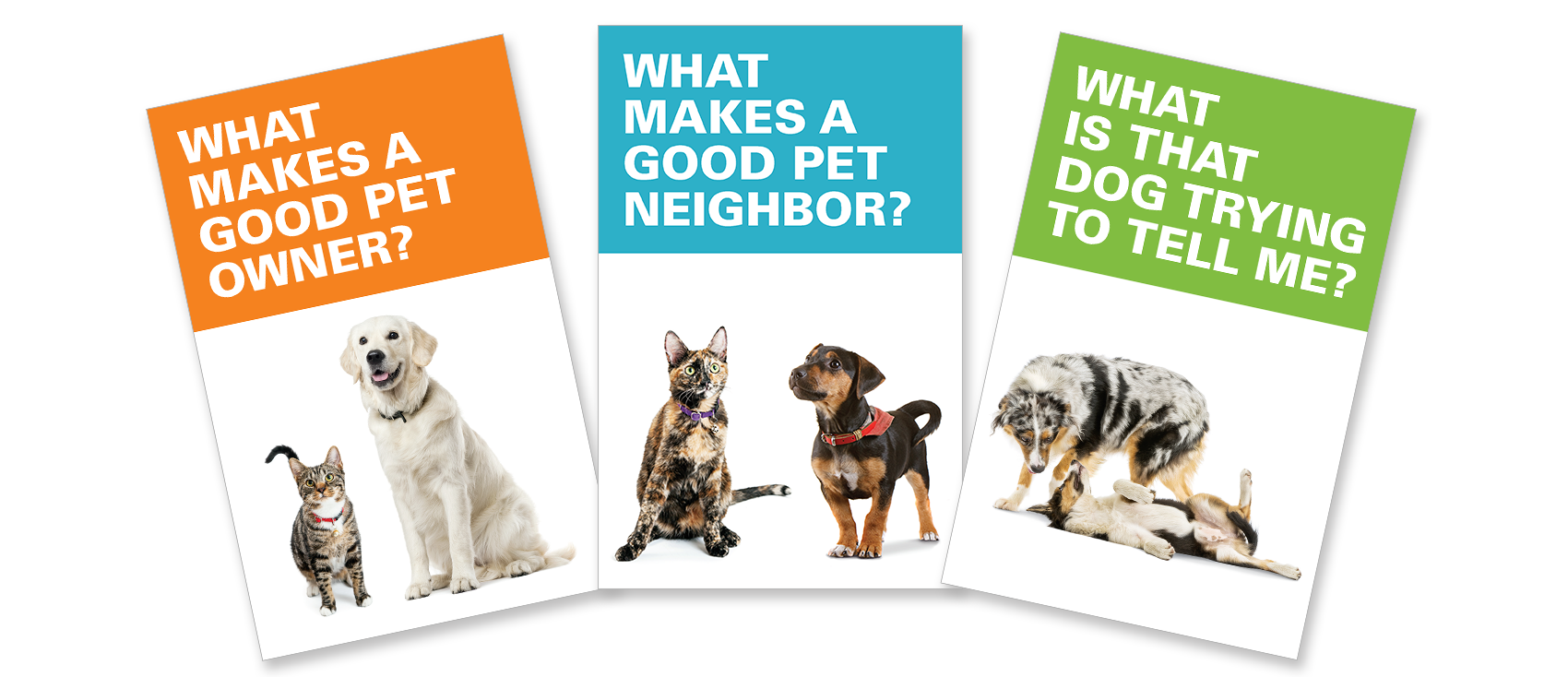 pet ownership brochures