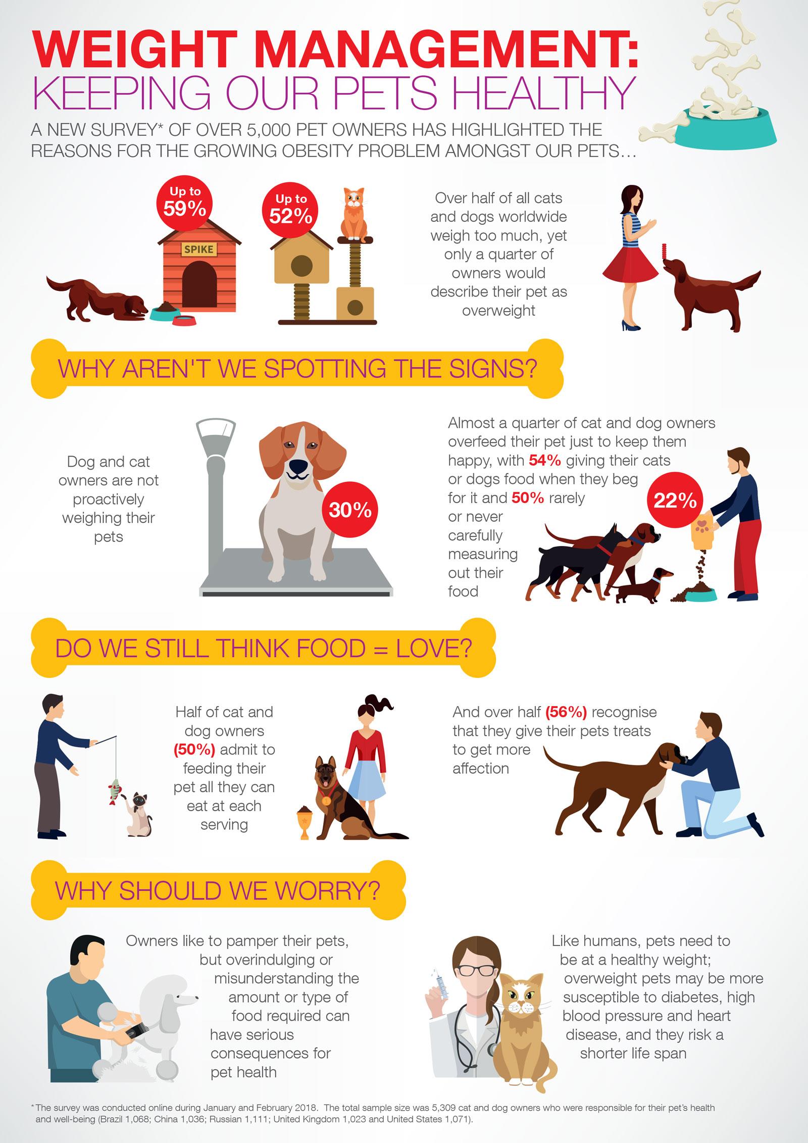 pet obesity infographic