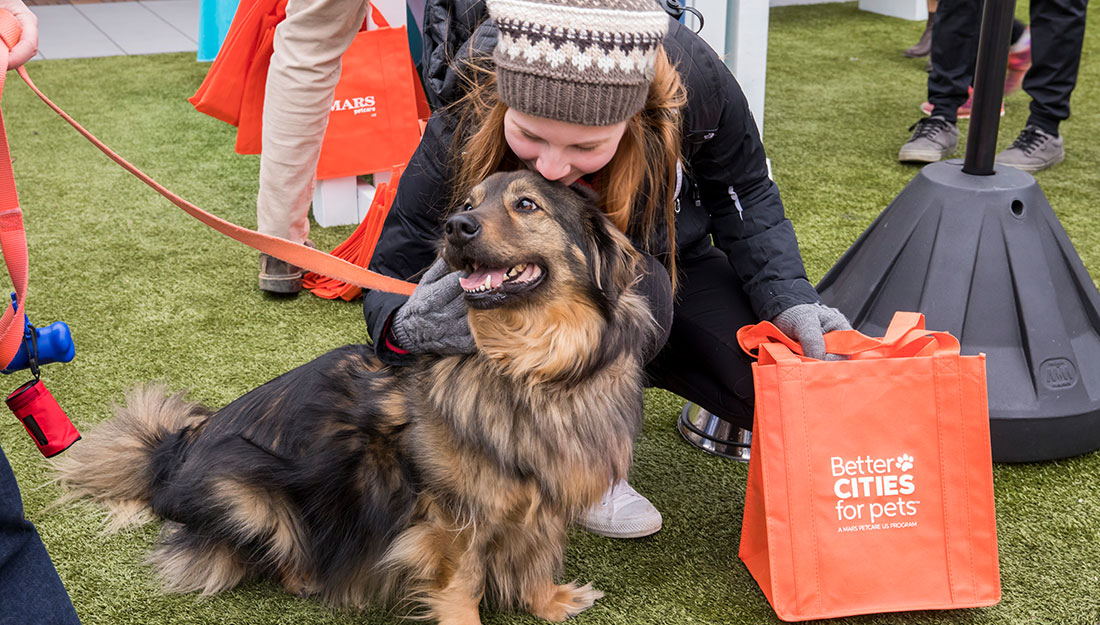 Pets Visiting Better Cities for Pets Popup