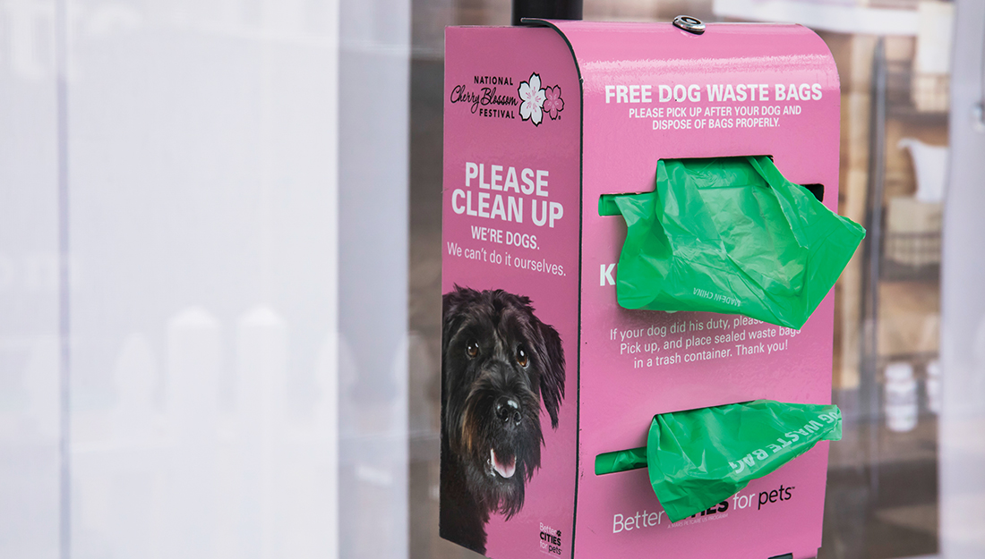 a dog waste bag dispenser is one of the handiest pet amenities