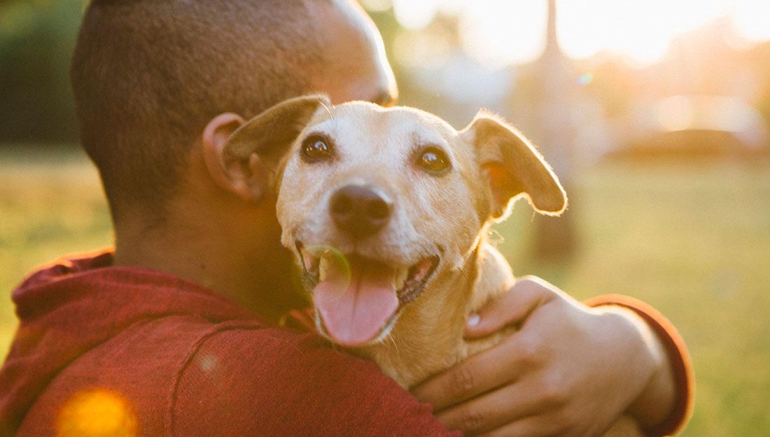 a happy rescue dog with his dad