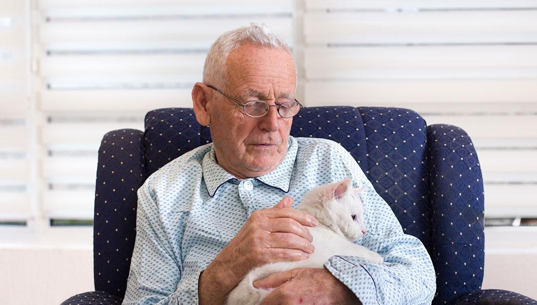 comfort animal at a nursing home