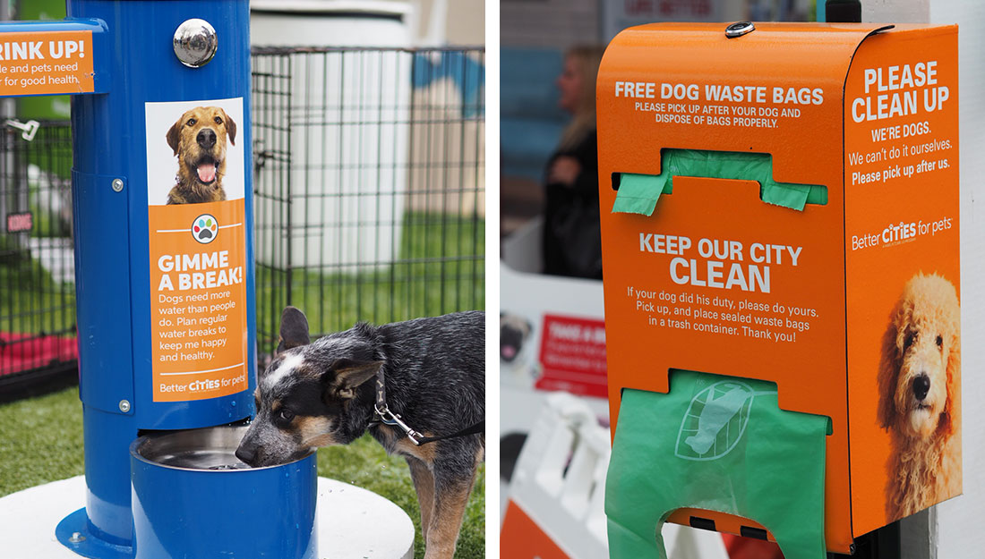 amenities that help city pets