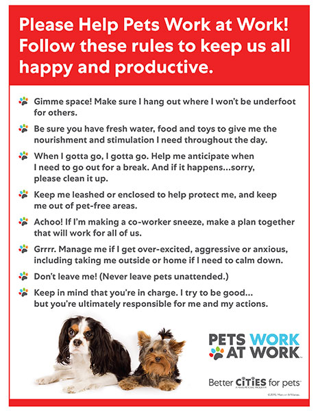 Poster of rules for pets at work.