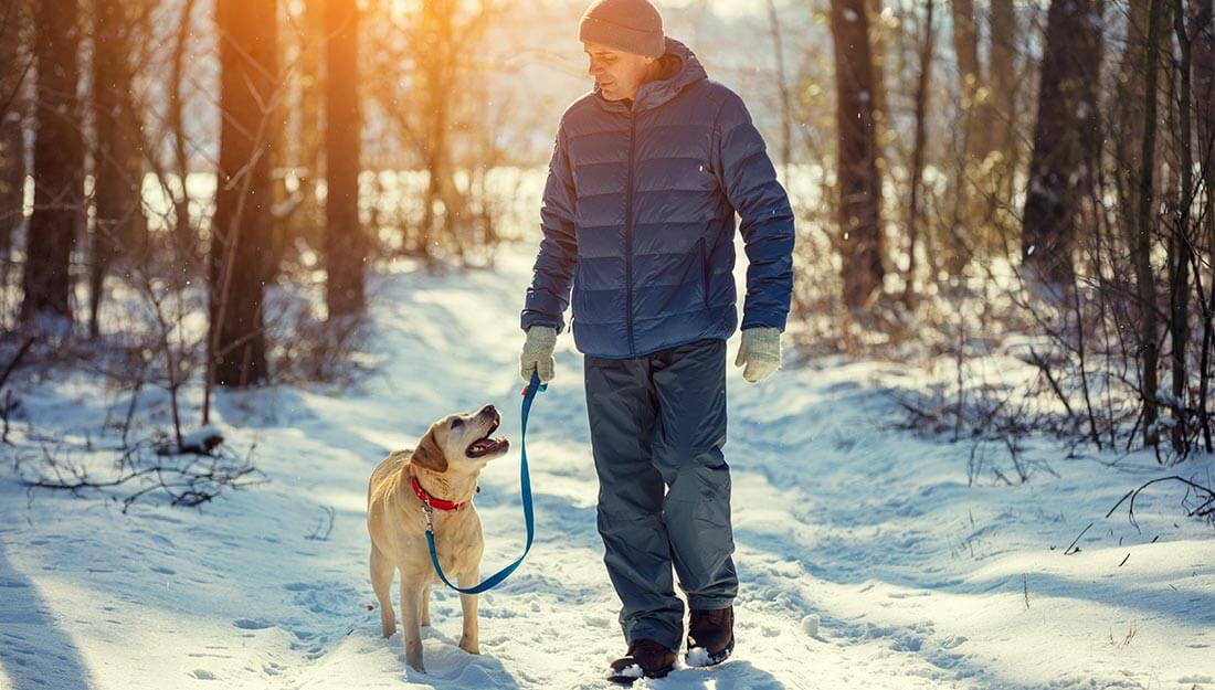 Man walking a dog in the snow as part of responsible pet ownership for good health