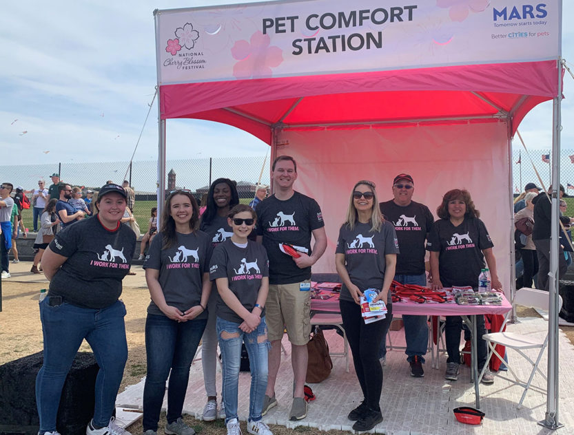 Volunteers at a pet comfort station booth at National Cherry Blossom Festival.