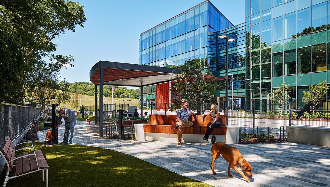 Dog park outside Mars Petcare North America headquarters.