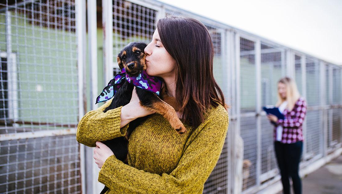 woman kissing dog at adoption center