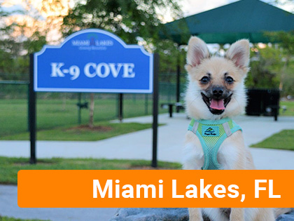 Dog outside at Miami Lakes K-9 Cove park