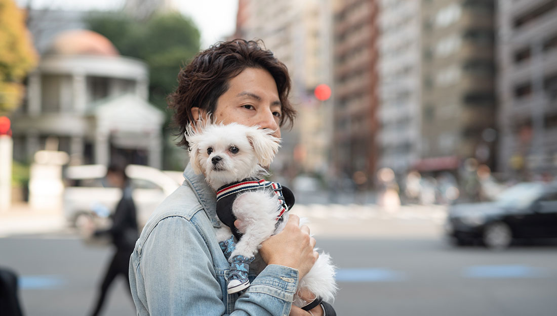 Man walking in city with small dog