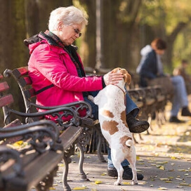 Pet owners have less depression, anxiety and loneliness.