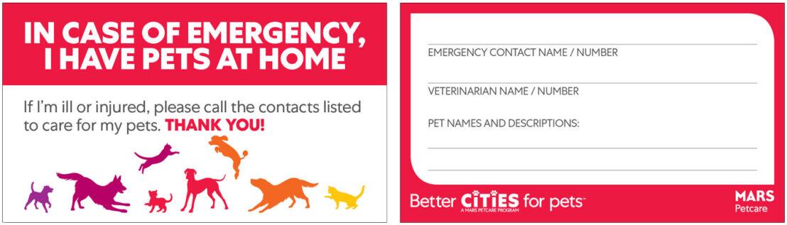 printable pet emergency card for wallet