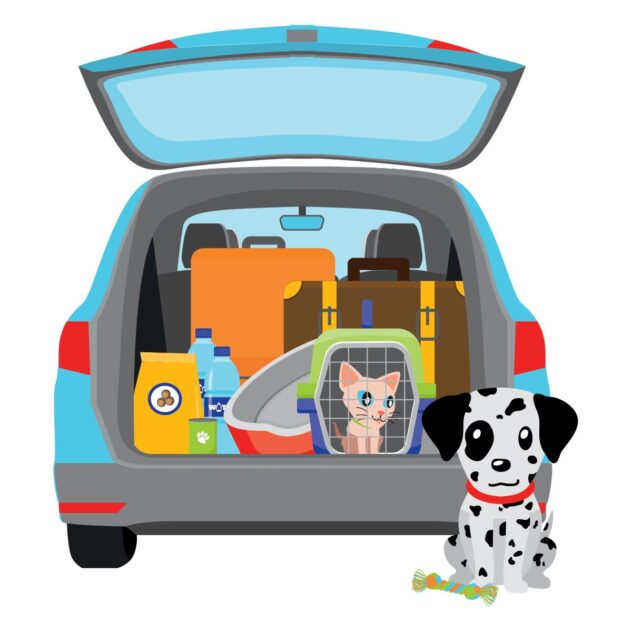 Car packed for road trip with cat and dog