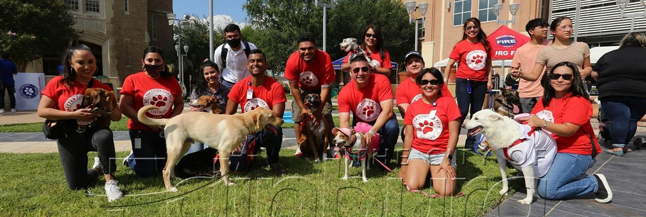 group posed with their dogs at city festival